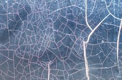 Cracked smooth surface Stock Photos
