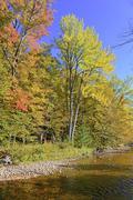 Fall foliage in the Adirondacks, New York - stock photo