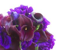 Calla lilly and eustoma flowers Stock Photos