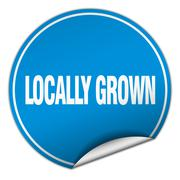 locally grown round blue sticker isolated on white - stock illustration