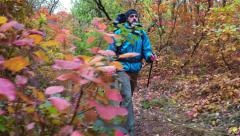 Man tourist in a blue jacket with a backpack goes in the autumn forest Stock Footage