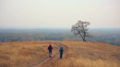 Man and female tourists are on road lonely tree nature autumn tour travel Stock Footage