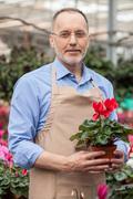 Skillful senior garden worker in plant nursery Stock Photos