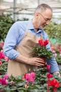 Professional shop assistant is working at greenhouse - stock photo