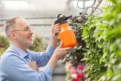Skillful old gardener is pouring flowerpots at greenhouse - stock photo