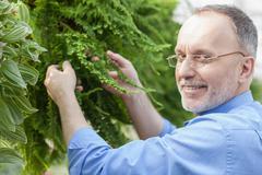 Stock Photo of Skillful old garden worker is planting vegetation