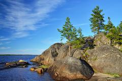 Karelian landscape: pines and rocks. Russia - stock photo