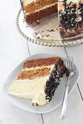 Chocolate layer cake Stock Photos