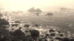 Bodega Bay Coastline Stock Footage