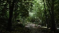 Mountain trail rocks Stock Footage
