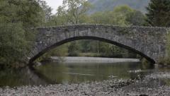 Ducks on River by Stone Bridge   1080p, 29.97fps Stock Footage