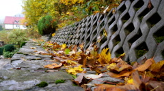 Colorful Leaf fall in the autumn - stock footage