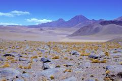 Barren volcanic landscape of the Atacama Desert, Chile Stock Photos