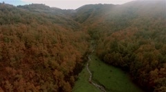 Aerial Autumn Forest with a river in the mountains Stock Footage