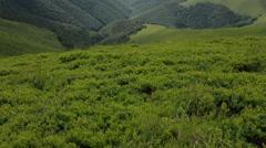 Carpathian highlands mountain landscape Stock Footage