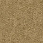 Sandstone Surface Background of Dirty Yellow - stock photo