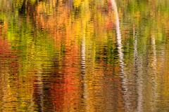 Abstract of fall color reflections - stock photo