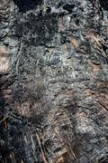 Burnt log with charcoal surface Stock Photos