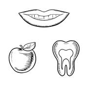 Smile, apple fruit and healthy tooth - stock illustration