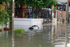 Water flood village Kuvituskuvat