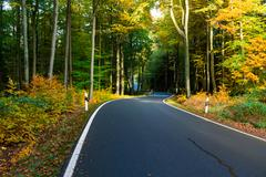 Autumn scene with road in forest, Autumn landscape with road and beautiful co - stock photo