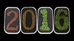 Time-lapse of growing New Year 2016 in RGB + ALPHA matte format Stock Footage