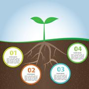 Plant And Root Infographic Background Design Template Stock Illustration