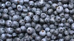 Fresh blueberry background Stock Footage