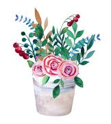 Watercolor bouquets of flowers in pot. Rustic floral set Stock Illustration