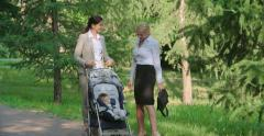 Parental Leave Stock Footage