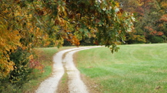 Beautiful Autumn Fall Wind Country Lane - stock footage