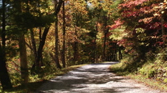 Single lane dirt road autumn Stock Footage