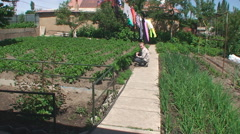 The boy sits on a path in a kitchen garden Stock Footage