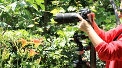 Female photographer mounting dslr onto tripod Stock Footage