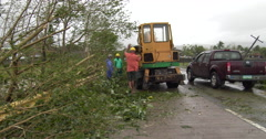 Clearing Fallen Trees After Hurricane Landfall Stock Footage