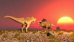 Dinosaurs triceratops and tyrex jurassic Stock Footage