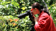 Female photographer photographing flower Stock Footage