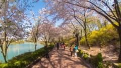 Seoul Korea Jamsil Park Stock Footage