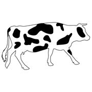 Silhouettes of spotted cow. Vector illustration. - stock illustration
