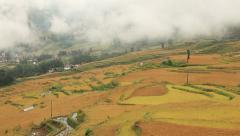 Autumn Rice Terraces Yunnan Stock Footage