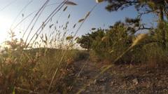 Landscape slopes at sunset Stock Footage