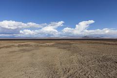 Soda Dry Lake Mud Flats in the Mojave Desert - stock photo