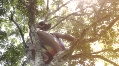 Teenager playing on treetop  Stock Footage