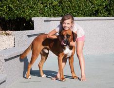 Girl caress her dog - stock photo
