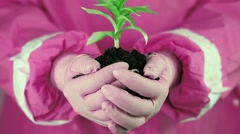 Woman in pink protective suit holding in hands soil and a green young p Stock Footage