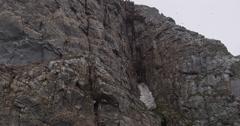 Slow motion - Part 2 - sea birds soar overhead near nesting cliff - stock footage
