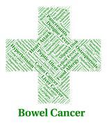 Bowel Cancer Indicates Large Intestines And Affliction Stock Illustration