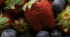 Strawberry berry fruit fresh food natural agriculture crops - stock footage