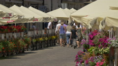 Tourists walking on a large alley between colorful flowers in Warsaw Stock Footage