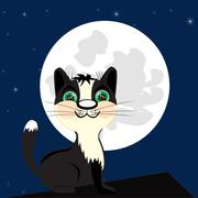 Stock Illustration of Cat on roof in the night